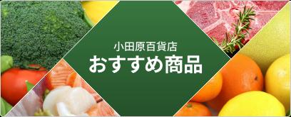 小田原百貨店おすすめ商品